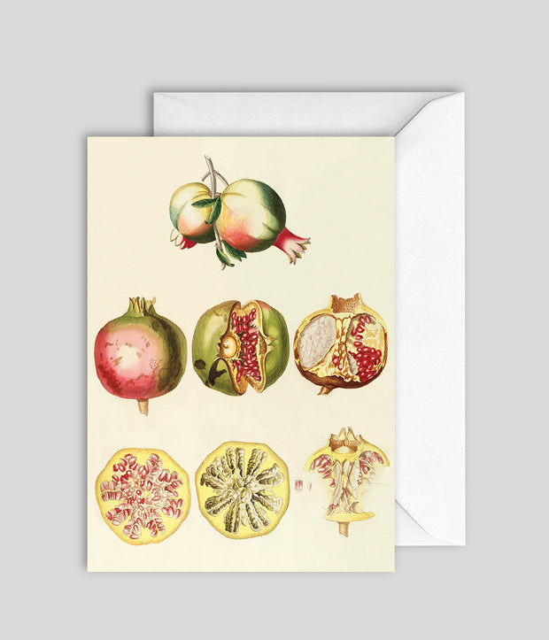 Pomegranate Card