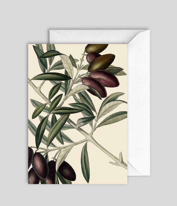 Olive Card