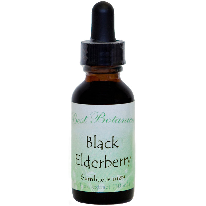 Black Elderberry Extract