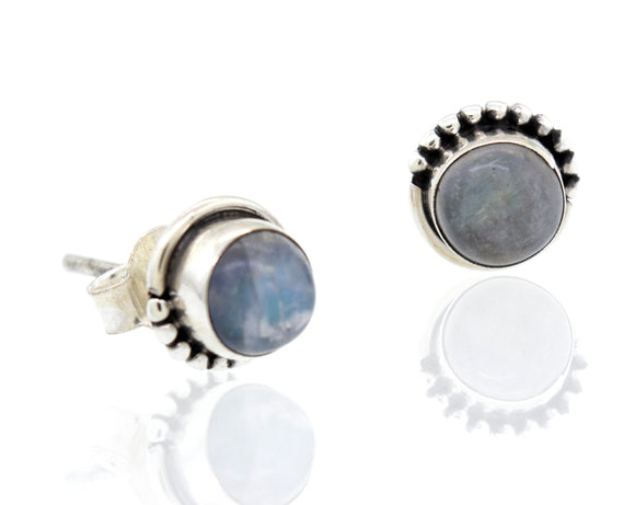 Small Circle Moonstone Studs with Ball Border