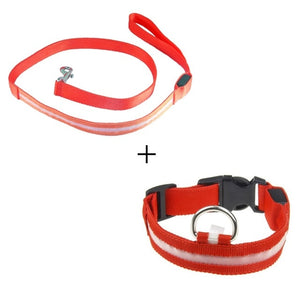 Looking to safely walk your dog at night? This LED collar set or harness set are perfect! - AllProDog
