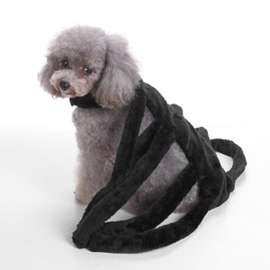 Spider Halloween Costumes for Small Dogs - AllProDog