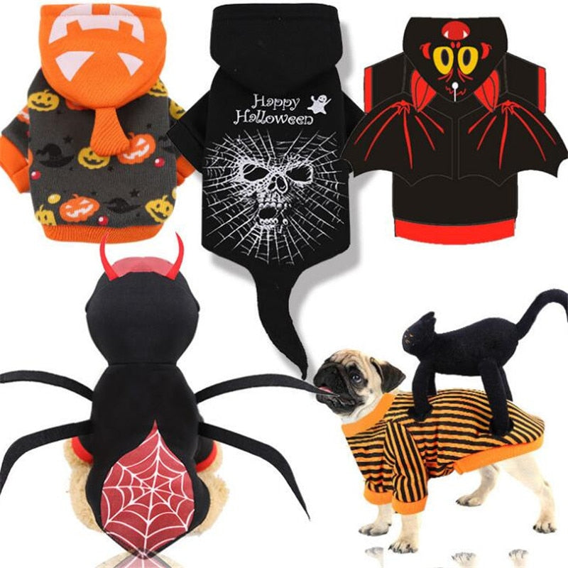 Pet Dog Cat Costumes Spider Skull Pumpkin Cosplay Clothes For Puppy Cats Halloween Outfit Clothing Drop Shipping