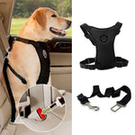 Looking for a way to safely have your dog riding in the car? This is the best product we have used!