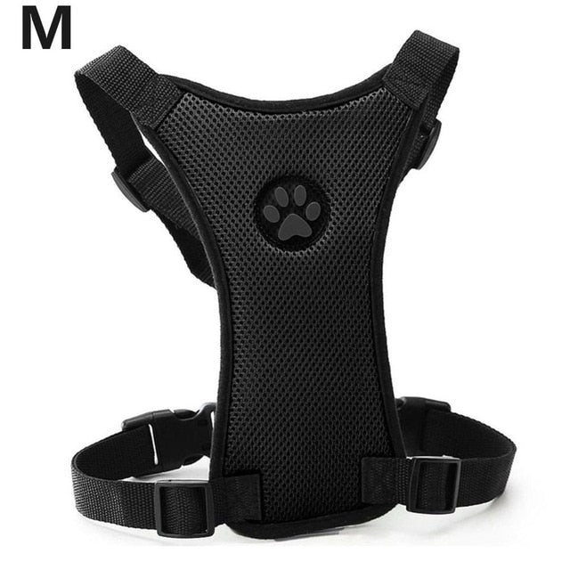 Looking for a way to safely have your dog riding in the car? This is the best product we have used! - AllProDog