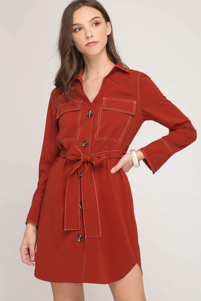 Surely Shirt Dress