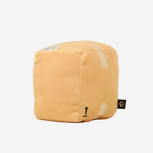 Box Pocket Pillow