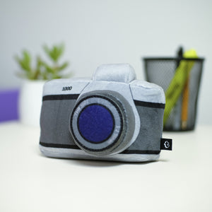 Camera Pocket Pillow