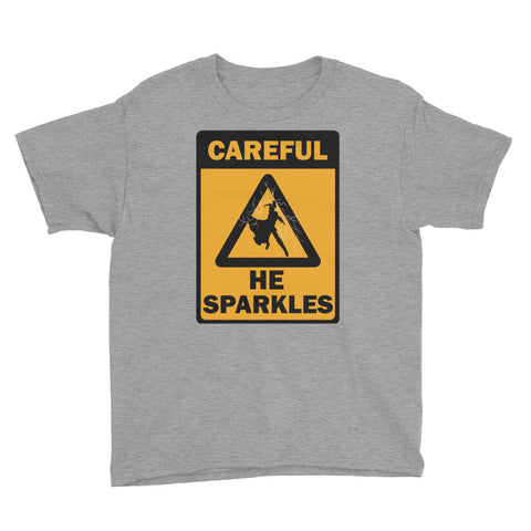 Careful: He Sparkles - Youth Tee