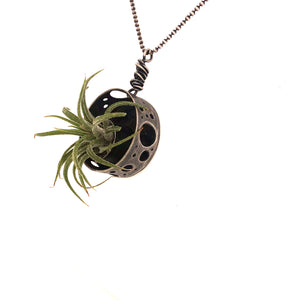 Air Plant Necklace