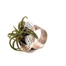 Load image into Gallery viewer, Air Plant Ring