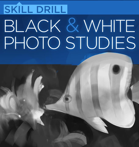 Black and White Photo Studies (Skill Drill)