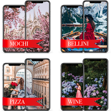 Load image into Gallery viewer, FIRST MOBILE (Bellini, Mochi, Pizza, Wine)