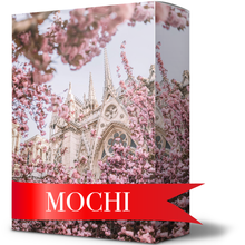 Load image into Gallery viewer, MOCHI (5 Presets)