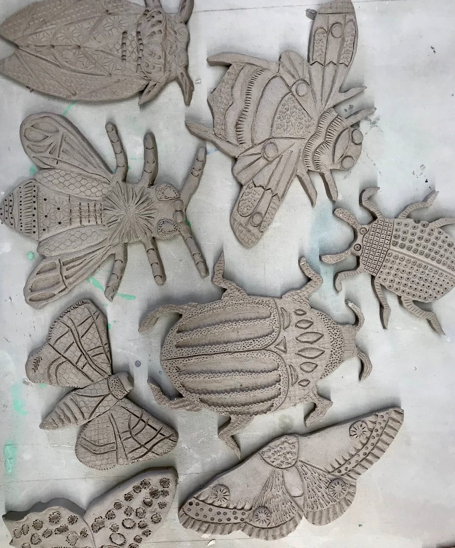 Pond Creatures Workshop (4 October 2020)