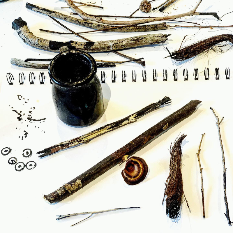Seed Art: Twig and Ink Drawing (25 July)
