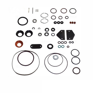 Roosa Master / Stanadyne Diesel Injection Pump Seal Kit for 24370 DB2 pumps
