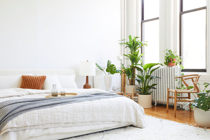 How To: Styling with Real and Faux Plants