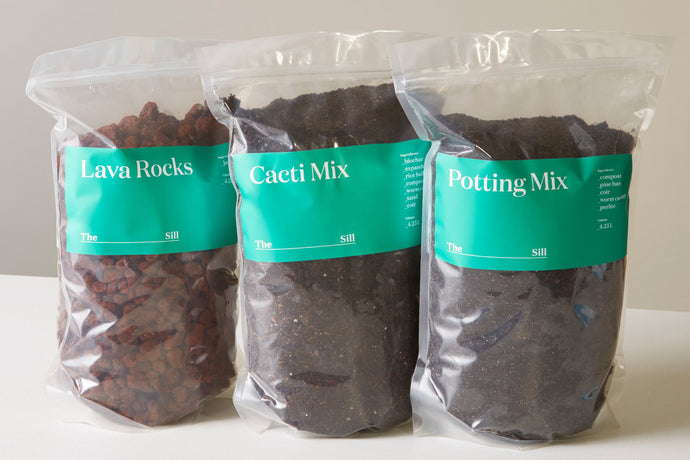 Plant Care: Potting Mix 101