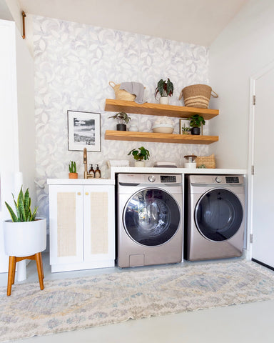 Washer and Dryer with Plants Nearby