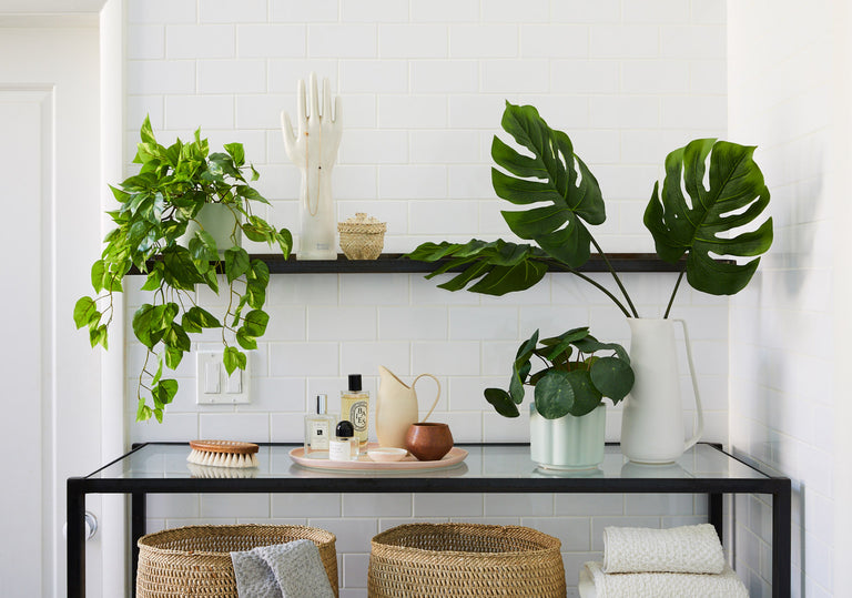 Shop our new line of faux plants