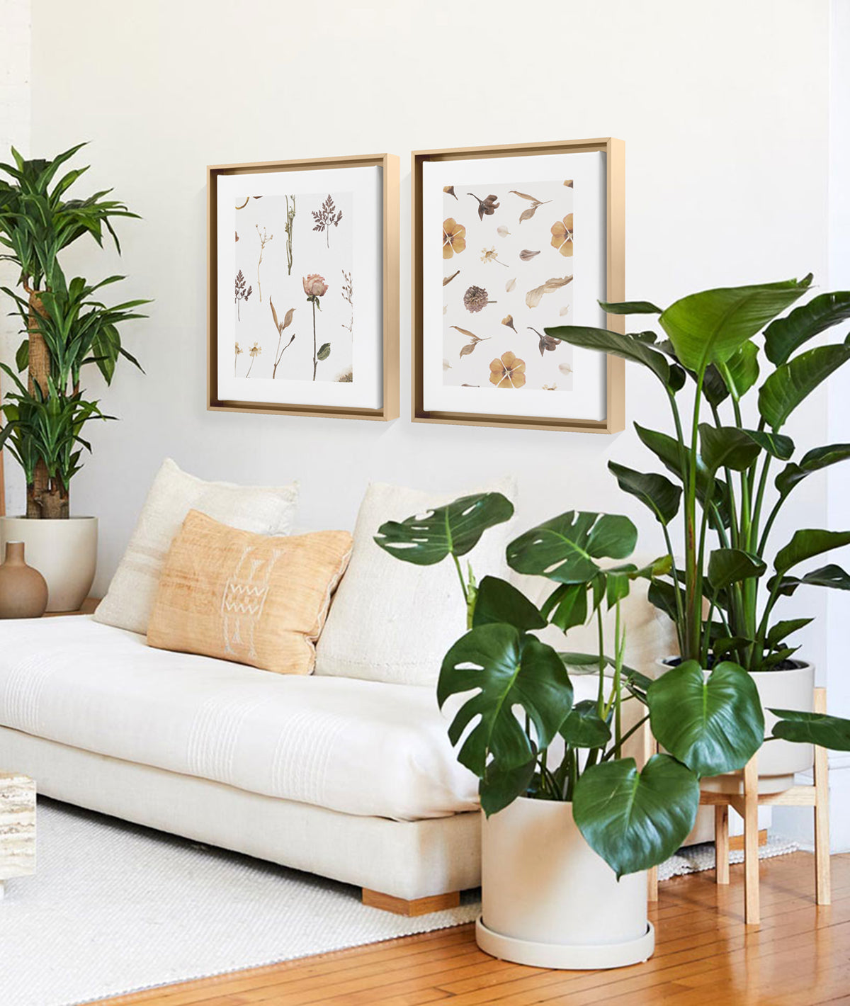 large floor plants next to couch