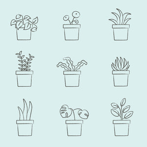 Pick your plant illustrated v2 1