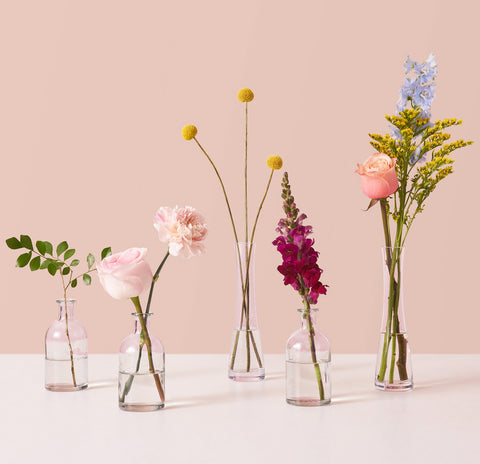 Cut Flowers and Stems in Bud Vases