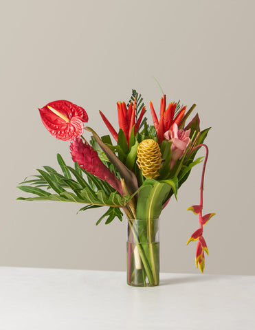 Big Tropical Bouquet Shop Mother's Day Gifts