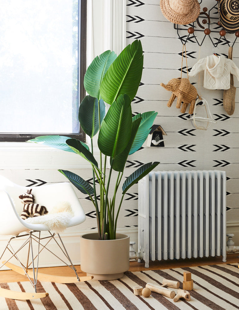 Faux Bird of Paradise - The Sill | Indoor Plants