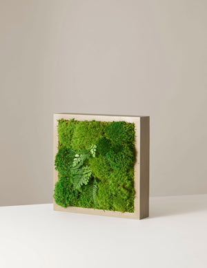"Preserved Mini Living Wall, 12"" x 12"""