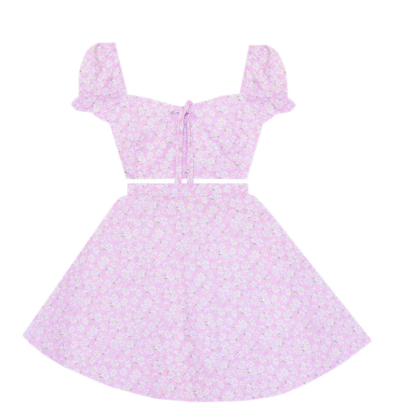Blushing Daisies 2 Piece Dress