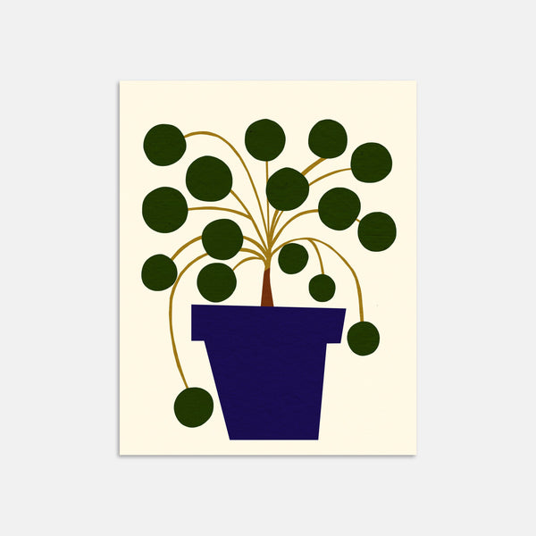 Pilea Art Print By Jordan Lee