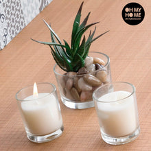 Load image into Gallery viewer, Oh My Home Aromatic Candles with Decorative Cactus (pack of 3)