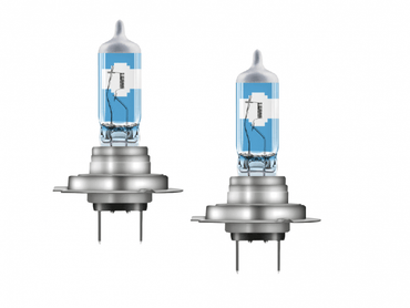 H7 Halogen Bulbs