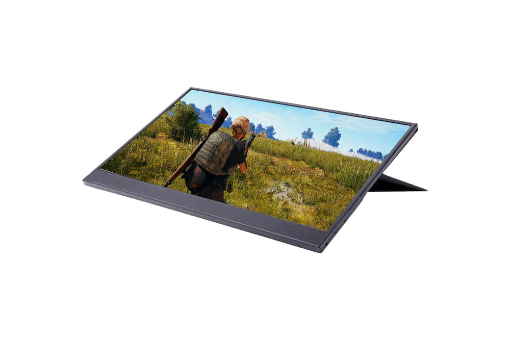 15.6-inch Portable LED Display