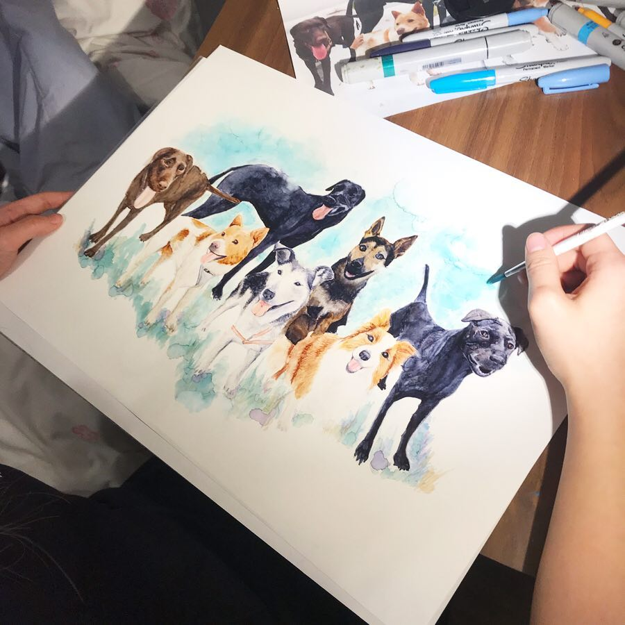 Stories behind the painting | Dog siblings' gift