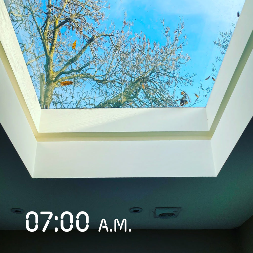 Every morning I would talk to the skylight window