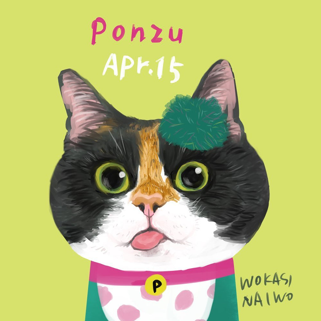 Fashionable Cats will Rule the Internet: Interview with Wokasinaiwo