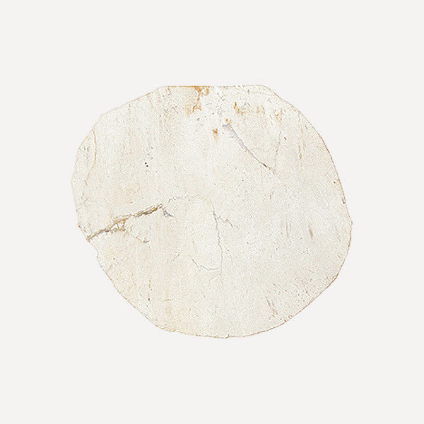 PETRIFIED WOOD COASTER White - Readymade Objects Shop - 1
