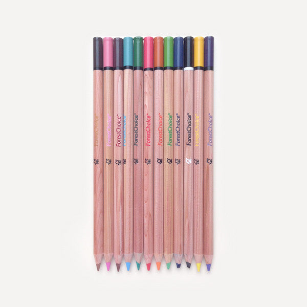 ForestChoice Color Pencils (12 pcs / pack) - Readymade Objects Shop - 1