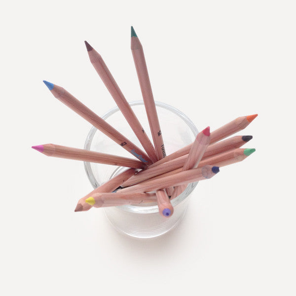 ForestChoice Color Pencils (12 pcs / pack) - Readymade Objects Shop - 3