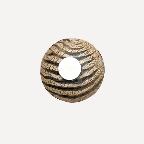 PUMPKIN MAGNET — Safari A - Readymade Objects Shop - 3