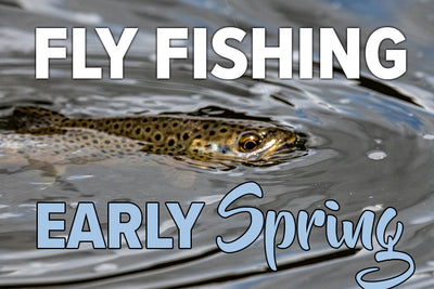 Fly Fishing In Early Spring