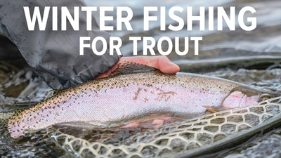 Tips for Winter Fishing in Montana