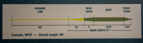 Tapered Leader Fly Line