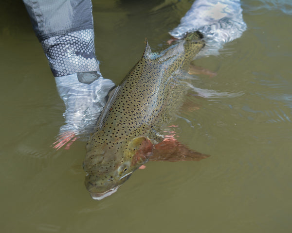 Stillwater Fishing Part 2 - The Hunt For Big Trout