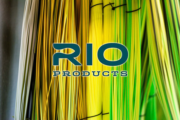 Rio Fly Lines - Best Fly Line