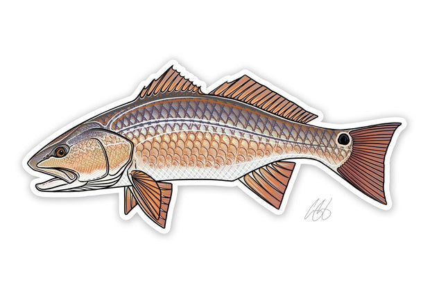 Redfish Sticker