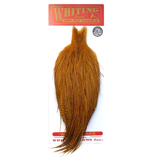 Whiting Cape Bronze